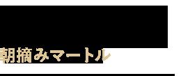 Fresh Mytle - 朝摘みマートル
