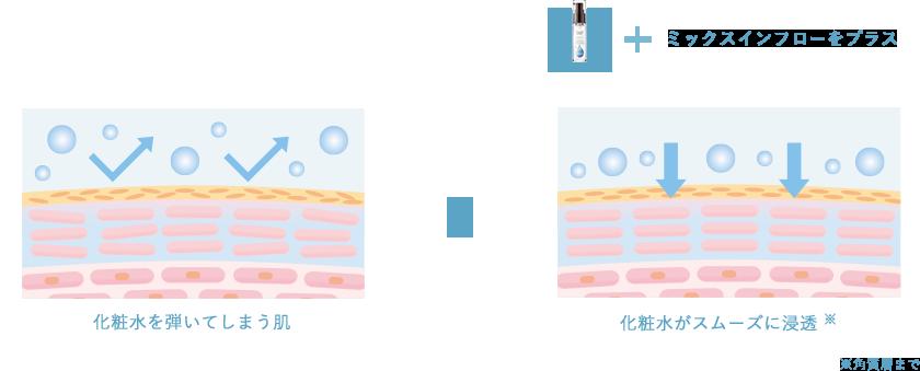 化粧水を弾いてしまう肌 ▶ ミックスインフローをプラス化粧水がスムーズに浸透 ※ ※角質層まで