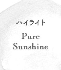 ハイライト Pure Sunshine